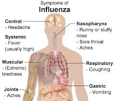 FLU SEASON AND THE IMPORTANCE OF FLU VACCINATIONS CVS