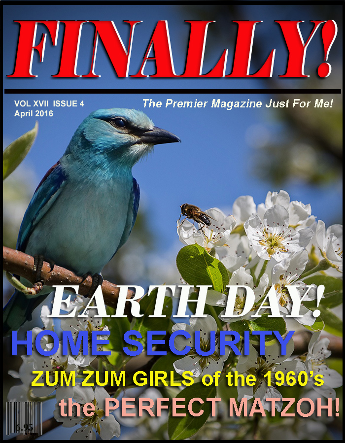 FINALLY! magazine Baby Boomer / Senior Citizens Magazin