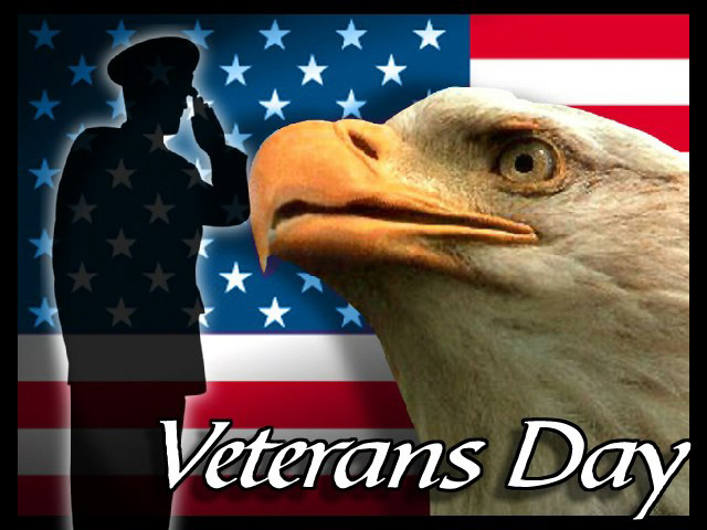 veterans day senior citizens
